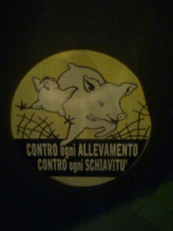 roma, s.lorenzo, cassonetto