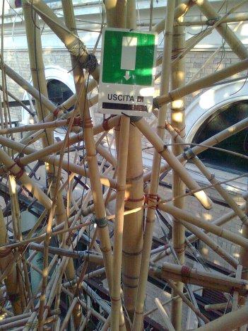roma, big bambu, uscita